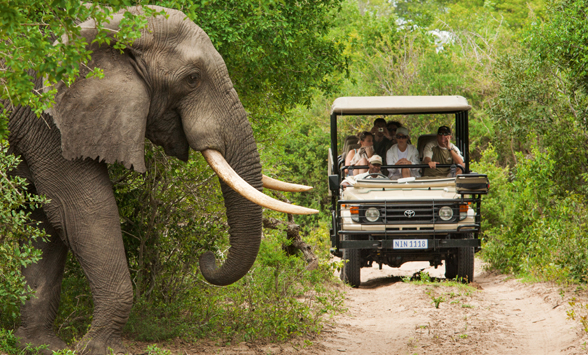 Malaria free safari holidays