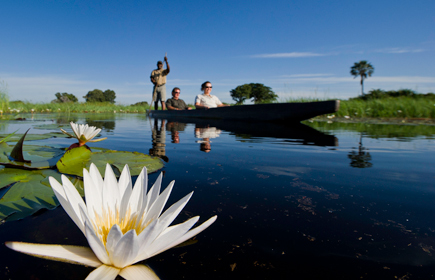 Top safari lodges in Botswana