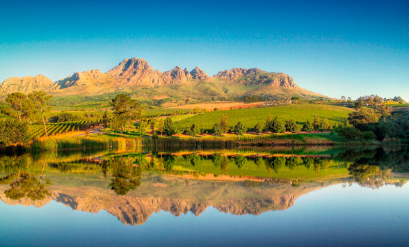 FAQ about the Cape Winelands.