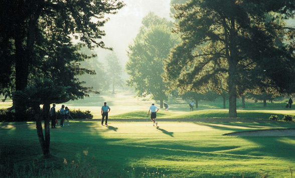 golfers walking through the misty fairways and trees.