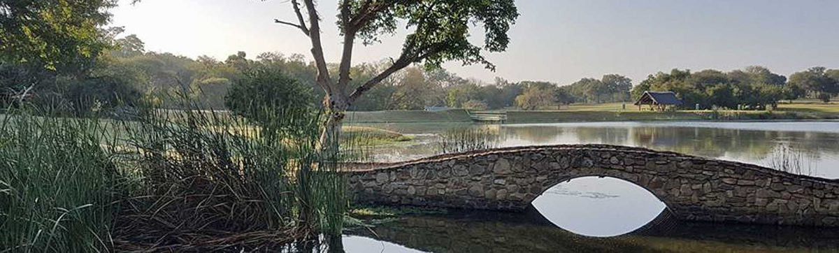morning mist hangs over the lake with a bridge in the foreground.