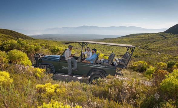 Nature drive in the Grootbos Floral Reserve surrounded by indigenous fynbos plants