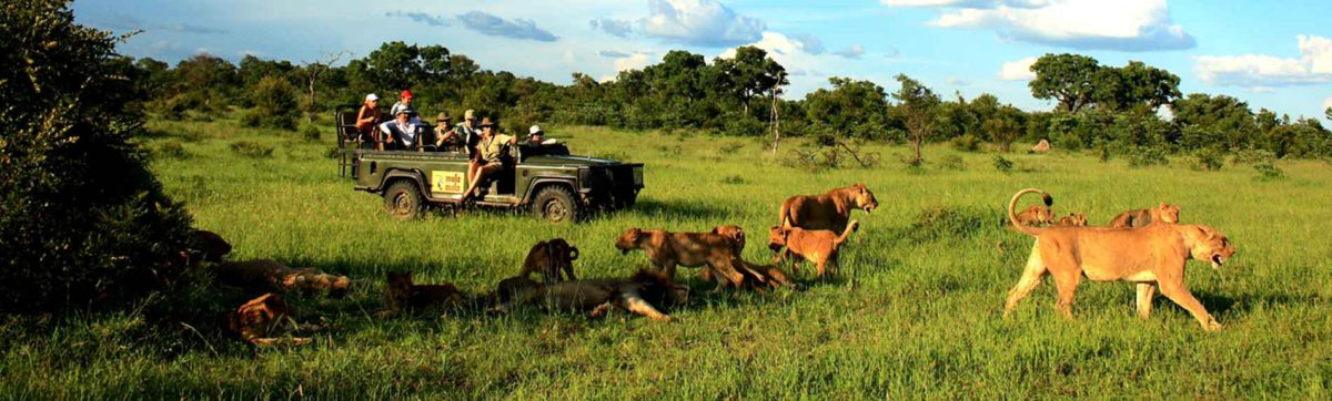 Best safari lodges in South Africa.