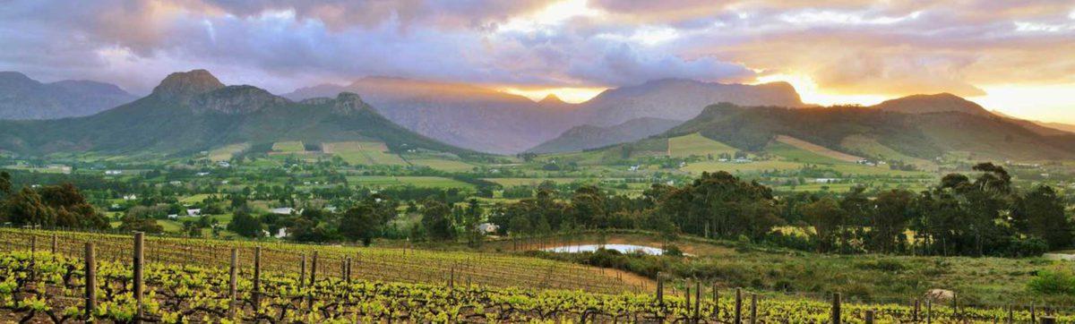 Sunset over Franschhoek Valley vineyards from La Petite Ferme