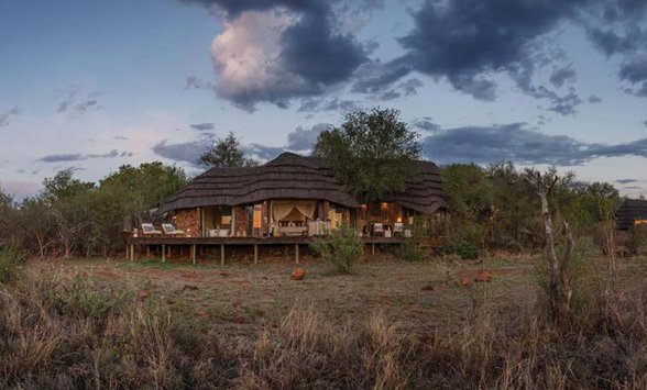 Luxury safari holidays in South Africa.