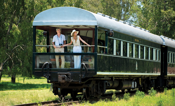 Couple standing on the back of the Observation Carriage of the Rovos Rail Train watching impala.