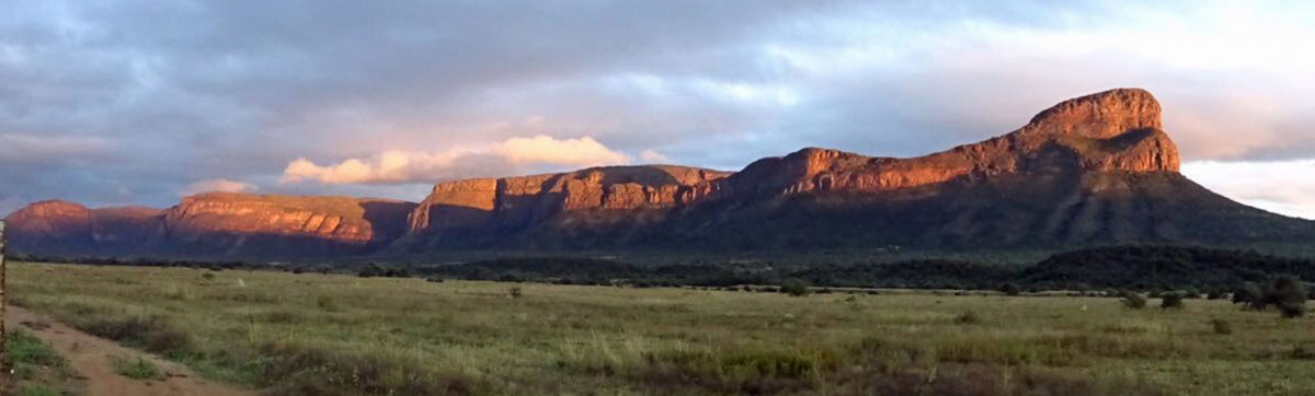 sunrise over the upper escarpment of the Entabeni Reserve.