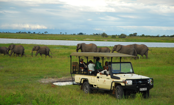 Guests on a game drive in Chobe National park watching elephant by the river.