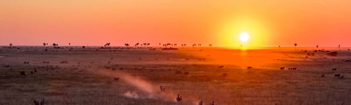 sun set in Botswana across the kalahari desert