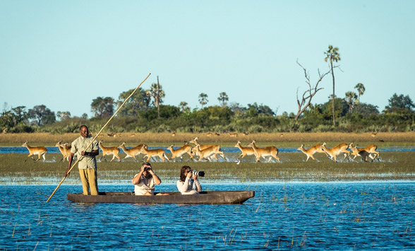 Guests on a moro safari with letchwe running through the shallows.