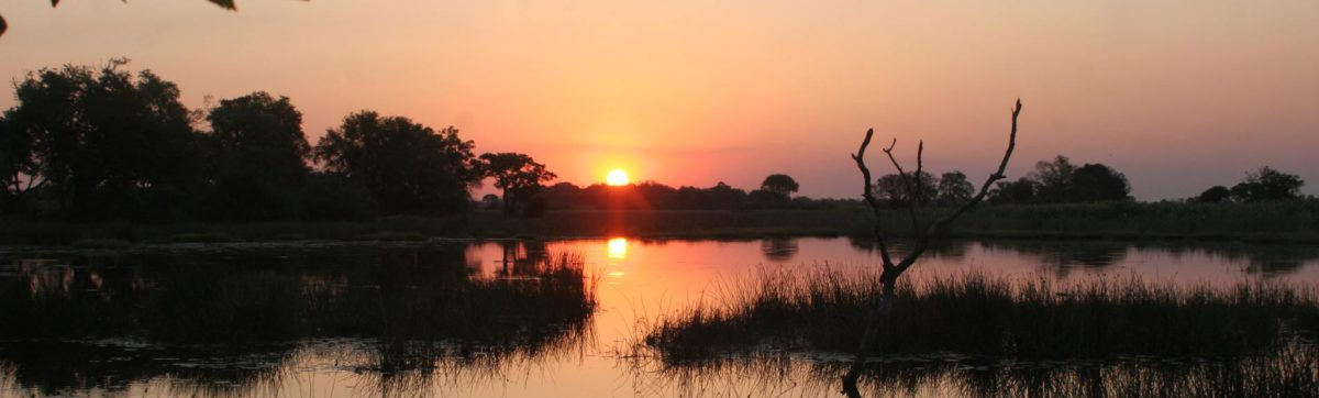 sunset reflected in a lagoon in the okavango delta