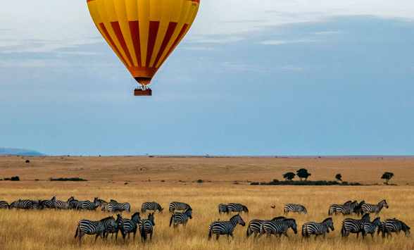 A hot air balloon floats across the savanna with a herd of zebra below.