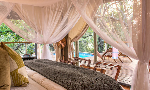Four poster bed in a tented room at Rhino Sands with view of the private deck and plunge pool.