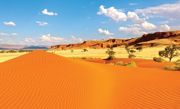 Red sand dune and desertscape.